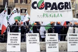 Roma, 25 Febbraio 2015 Protesta dei produttori agricoli contro l'IMU , organizzata da Copagri